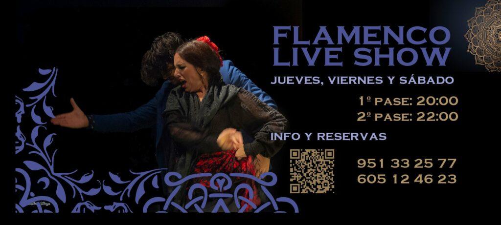 espectaculo flamenco show en malaga